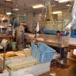 (有)中山商店 当社は業務店(すし屋・料理屋)専門の魚種を主として取り扱っています。まぐろ、貝類、高級白身、活魚、生うに等、鮮魚特上の品ぞろえを目指しております。