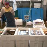 (株)福栄水産 新鮮・・・活きの良い品揃え 大きい物から小さい物まで品質まちがいなし・・・